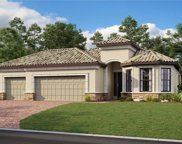 20109 Umbria Hill Drive, Tampa image