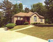 95 Crooked Creek Ln, Odenville image