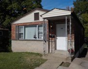 1111 Canaan, St Louis image