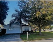 17721 Pebble Creek Court, Clermont image