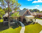 461 Newt Patterson Road, Mansfield image