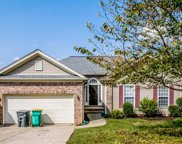2923 Wills Ct, Spring Hill image