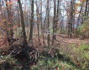 Lot 50 Mountain Ash Way, Sevierville image