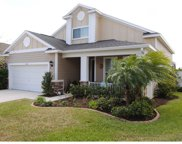 11558 Balintore Drive, Riverview image