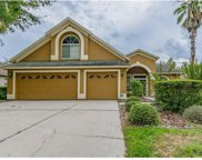 10217 Timberland Point Drive, Tampa image