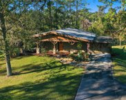 3015 Wolf Branch Road, Mount Dora image