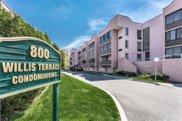 800 Willis  Avenue Unit #106, Albertson image