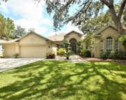 5704 Eaglepoint Place, Lithia image