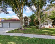 8051 Tantallon Way, Trinity image