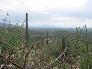 5365 N Wentworth, Tucson image