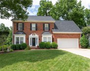 104  White Branch Court, Fort Mill image