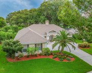 2889 Landing Way, Palm Harbor image