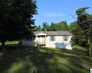 503 Old Settlement Rd, Oneonta image
