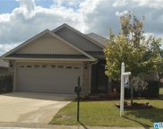 192 Crisfield Cir, Calera image