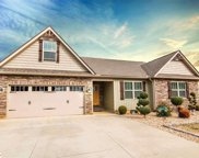 231 Cooley Circle, Campobello image