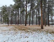 TBD Forest Rd, Rapid City image