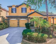 20207 Heritage Point Drive, Tampa image