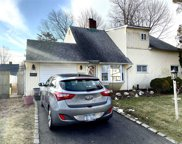 20 Hope Ln, Hicksville image