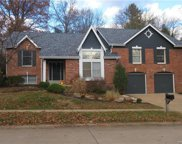 14367 White Birch Valley, Chesterfield image