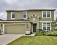 11235 Spring Point Circle, Riverview image