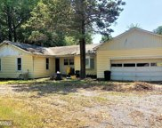 3519 LOCH HAVEN DRIVE, Edgewater image