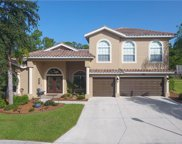 12411 Pebble Stone CT, Fort Myers image