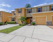 13947 River Willow Place, Tampa image