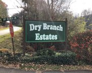 LOT 3 Dry Branch Estates, Blue Ridge image