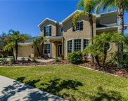 16146 Colchester Palms Drive, Tampa image