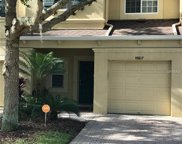 10617 Shady Falls Court, Riverview image