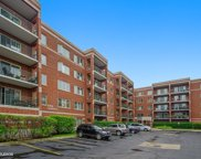 6461 West Warner Avenue Unit 206, Chicago image
