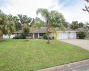 2939 Blackwater Oaks Drive, Mulberry image