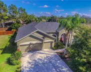 15205 Arbor Hollow Drive, Odessa image