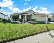 11002 Holly Cone Drive, Riverview image