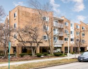 203 North Kenilworth Avenue Unit 3M, Oak Park image
