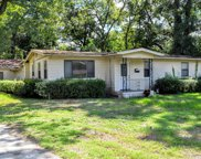 1003 BRIERFIELD DR, Jacksonville image