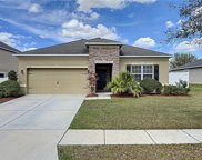 13216 Waterford Castle Drive, Dade City image