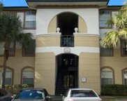 17110 Carrington Park Drive Unit 832, Tampa image