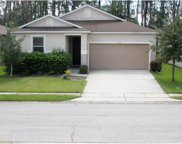 1516 Nature Trail, Kissimmee image