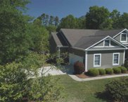 3876 Cow House Court, Murrells Inlet image