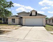 3125 Summer House Drive, Valrico image