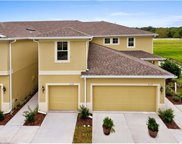 10973 Verawood Drive, Riverview image