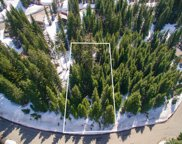 0 Ober Strasse, Snoqualmie Pass image