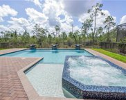 2786 Cinnamon Bay Cir, Naples image