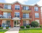 16641 Liberty Circle Unit 1S, Orland Park image