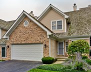 192 Red Top Drive, Libertyville image