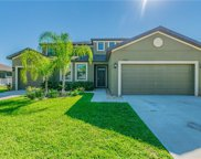 11602 Shelby Jay Drive, Riverview image