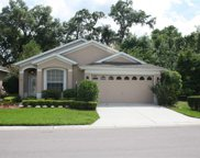 10016 Brookdale Drive, New Port Richey image