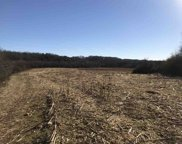 35 acres Bowater Rd, Riceville image