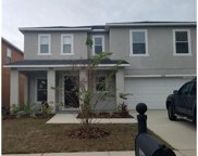 11250 Running Pine Drive, Riverview image